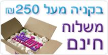 בסקסטויז משלוח חינם בקנייה מעל 250 שח